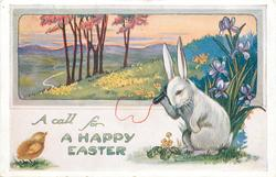 A CALL FOR A HAPPY EASTER  white rabbit telephones right, iris, rural inset above