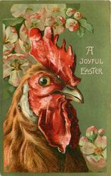 A JOYFUL EASTER  cockerel faces front/right below blossom