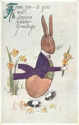 FROM ME-TO YOU WITH JOYOUS EASTER GREETINGS  dressed rabbit walks right carrying daffodils