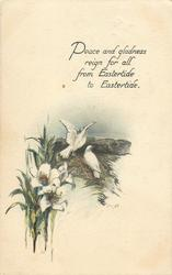 PEACE AND GLADNESS REIGN FOR ALL FROM EASTERTIDE TO EASTERTIDE  two doves, lilies