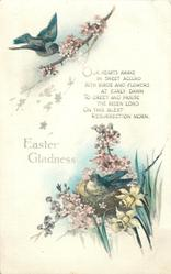 EASTER GLADNESS  bird on nest in blossom, another above