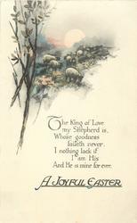 A JOYFUL EASTER  sheep, rising sun