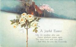 A JOYFUL EASTER  rose, snow, blossom
