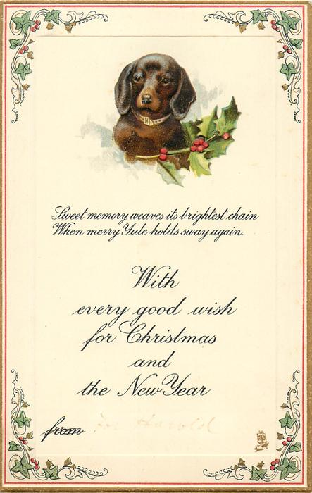 WITH EVERY GOOD WISH FOR CHRISTMAS AND THE NEW YEAR   FROM dachshund & holly