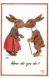 HOW DO YOU DO?  male & female dressed rabbits meet & rub noses