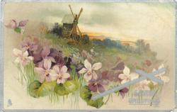 EASTER GREETINGS  windmill on hill, violets