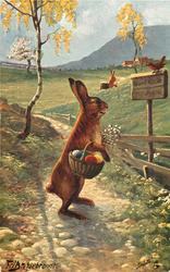 rabbit carrying basket of coloured eggs looks at sign post