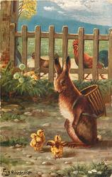 rabbit with basket on back talks to two chicks