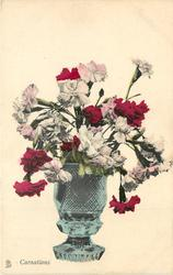 CARNATIONS  in a vase with flat base