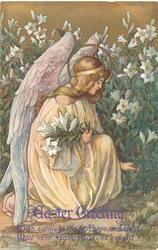 EASTER GREETING  kneeling angel picks Easter lilies