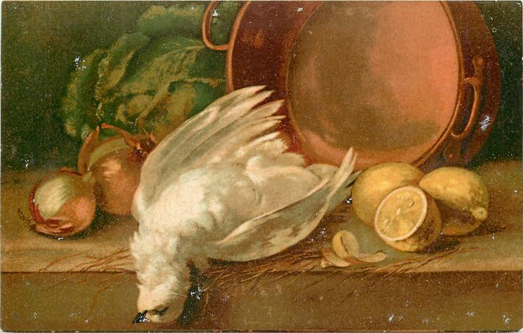 white pigeon lying dead between onions and lemons, copper pot behind