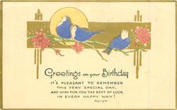 GREETINGS ON YOUR BIRTHDAY, blue-birds, gilt oblong, sun