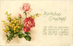 BIRTHDAY GREETINGS    roses & mimosa