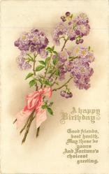 A HAPPY BIRTHDAY purple roses