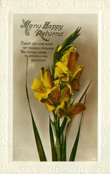 MANY HAPPY RETURNS yellow lilies