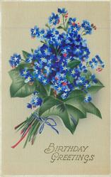 BIRTHDAY GREETINGS  bunch of blue forget-me-nots & ivy leaves, stems to left