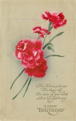 A HAPPY BIRTHDAY red carnations