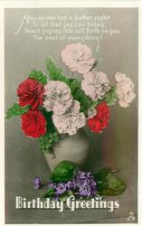 BIRTHDAY GREETINGS   vase of carnations, violets below