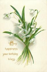 MAY HAPPINESS YOUR BIRTHDAY BLESS  snowdrops