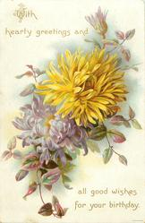 WITH HEARTY GREETINGS AND ALL GOOD WISHES FOR YOUR BIRTHDAY  yellow & purple chrysanthemums