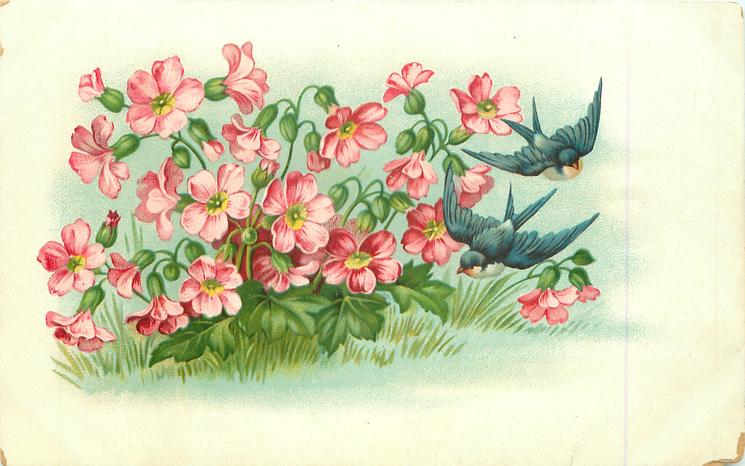 pink flowers to left, two swallows fly right