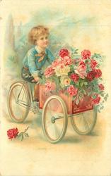 boy on three wheeled cycling cart, box full of roses