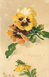 yellow and orange pansies, two above with single yellow bud beneath facing down