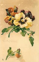 yellow and rust pansies, single orange bud beneath faces right