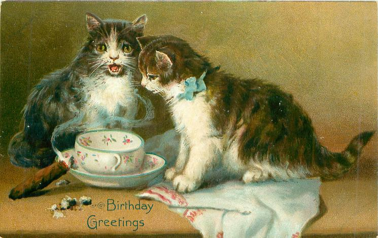 BIRTHDAY GREETINGS  two cats by cup & saucer, smoking cigar on saucer
