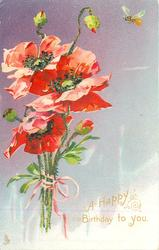 A HAPPY BIRTHDAY TO YOU  red poppies, purple background