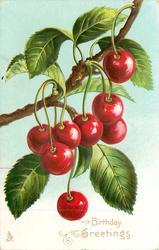 BIRTHDAY GREETINGS  cherries hanging from branch