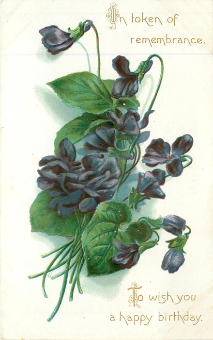 IN TOKEN OF REMEMBRANCE TO WISH YOU A HAPPY BIRTHDAY  blue violets