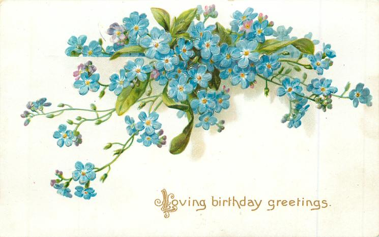 LOVING BIRTHDAY GREETINGS  forget-me-nots
