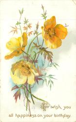 TO WISH YOU ALL HAPPINESS ON YOUR BIRTHDAY  yellow poppies