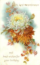 WITH KIND REMEMBRANCE AND BEST WISHES FOR YOUR BIRTHDAY  chrysanthemums