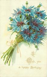 TO WISH YOU A HAPPY BIRTHDAY  blue cornflowers (batchelor buttons)