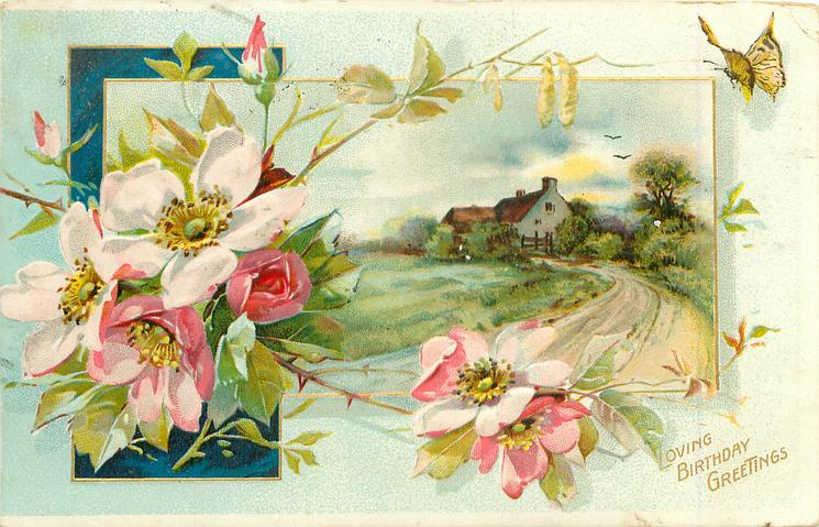 LOVING BIRTHDAY GREETINGS  inset  road leading back to two houses. Dog roses left