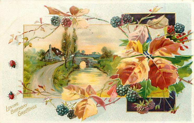 LOVING BIRTHDAY GREETINGS  inset  stream, bridge, house and road, blackberries right