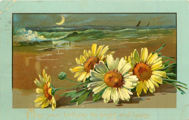 MAY YOUR BIRTHDAY BE BRIGHT AND HAPPY  very distant ships, crescent moon, yellow daisies front right