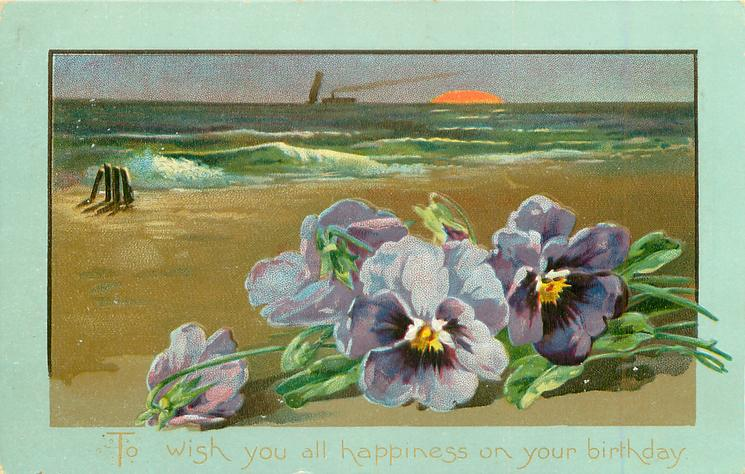 TO WISH YOU ALL HAPPINESS ON YOUR BIRTHDAY  very distant ships, moon, pansies front right
