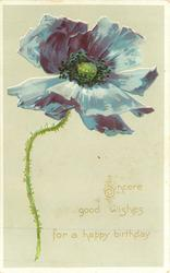 SINCERE GOOD WISHES FOR A HAPPY BIRTHDAY  blue poppy