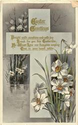EASTER GREETINGS narcissi