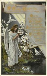 A HAPPY EASTER-TIDE angel gathers lilies left of scroll