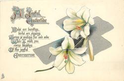 A JOYFUL EASTERTIDE  lilies