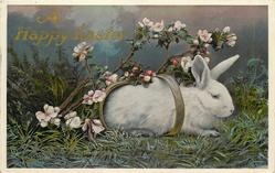 A HAPPY EASTER  rabbit in basket, wild roses above