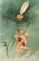 FONDEST LOVE  cherub with one petal left on flower
