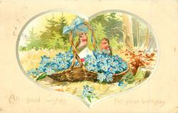 ALL GOOD WISHES FOR YOUR BIRTHDAY  two robins on basket of forget-me-nots
