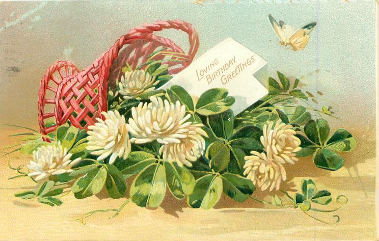 LOVING BIRTHDAY GREETINGS  basket of white clover on its side, card in basket, butterfly above