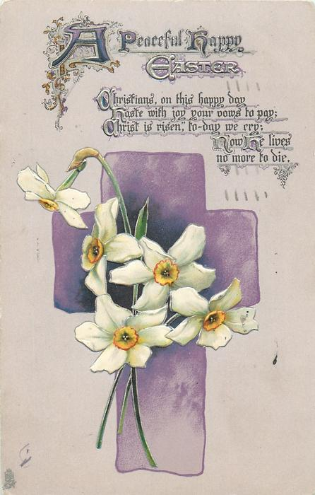 A PEACEFUL HAPPY EASTER  narcissi