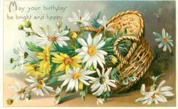 MAY YOUR BIRTHDAY BE BRIGHT AND HAPPY  basket of daisies